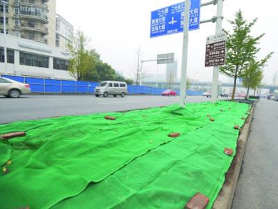 防尘绿化网
