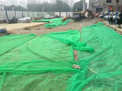 福建防尘绿化网