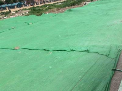 公路裸土盖土网