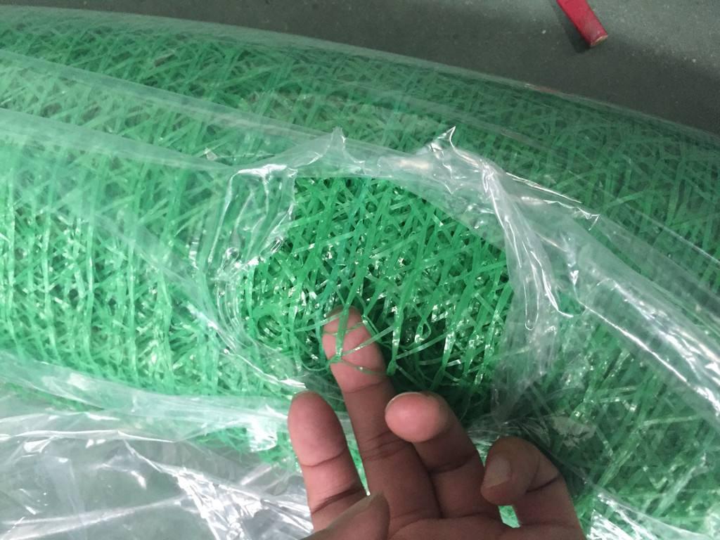 绿色盖土网.jpg